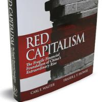 """book review red capitalism the fragile financial This forms the main vein of the timely new book, """"red capitalism: the fragile financial foundation of china's extraordinary rise"""" (isbn: 978-0-470-82586-0 john wiley & sons) by carl e ."""